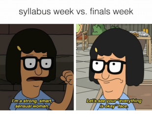 syllabus-week-vs-finals-week-lets-see-your-everything-lim-8734049.png