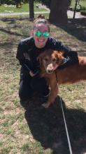 Woodley is my neighbors dog that my roommate walks